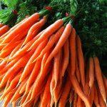 bialas carrots CSA