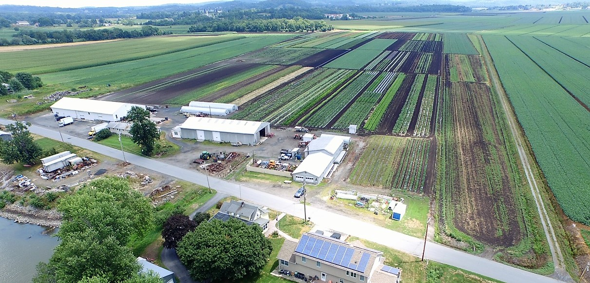 Bialas Farms Summer Overhead